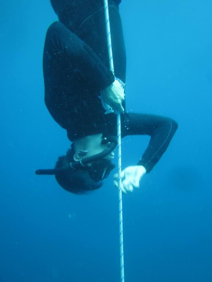 เรียน Freediving เกาะเต่า