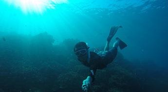 freediving เกาะเต่า