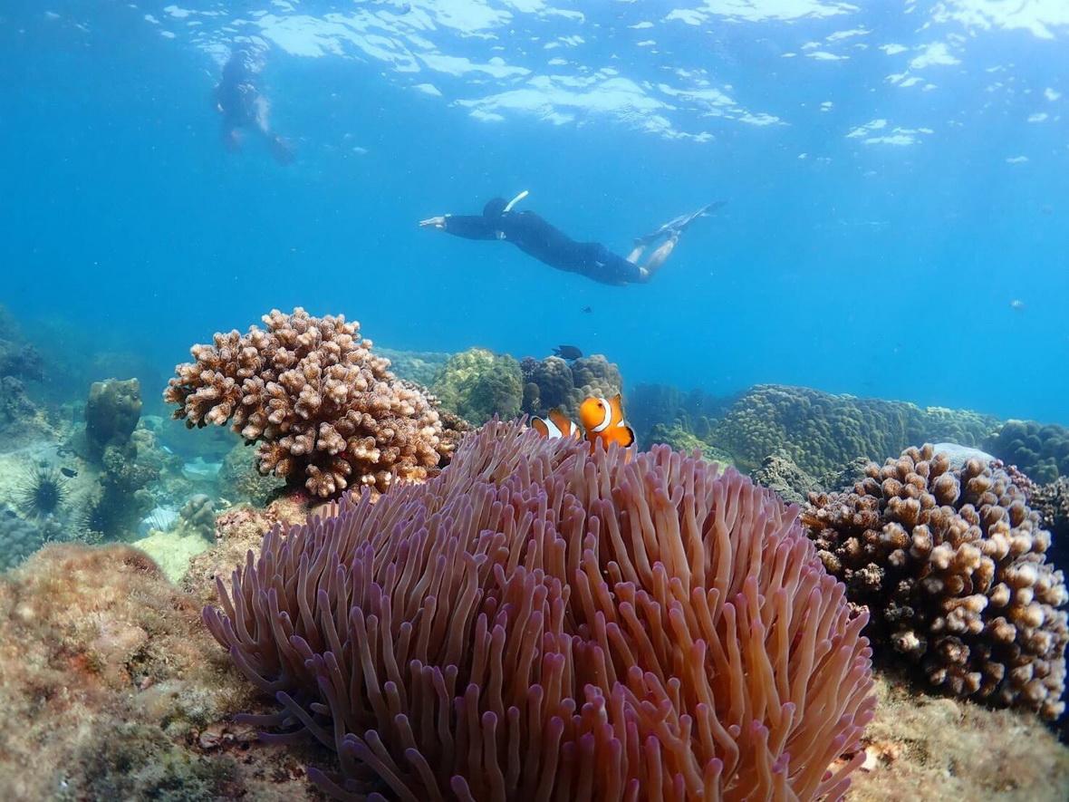 Freediving ทะเลใกล้กรุงเทพฯ
