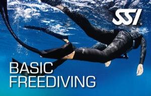 เรียน SSI Basic Freediving