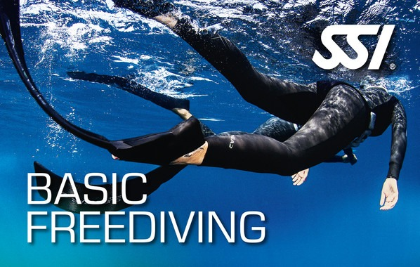 เรียน SSI Basic Freediving