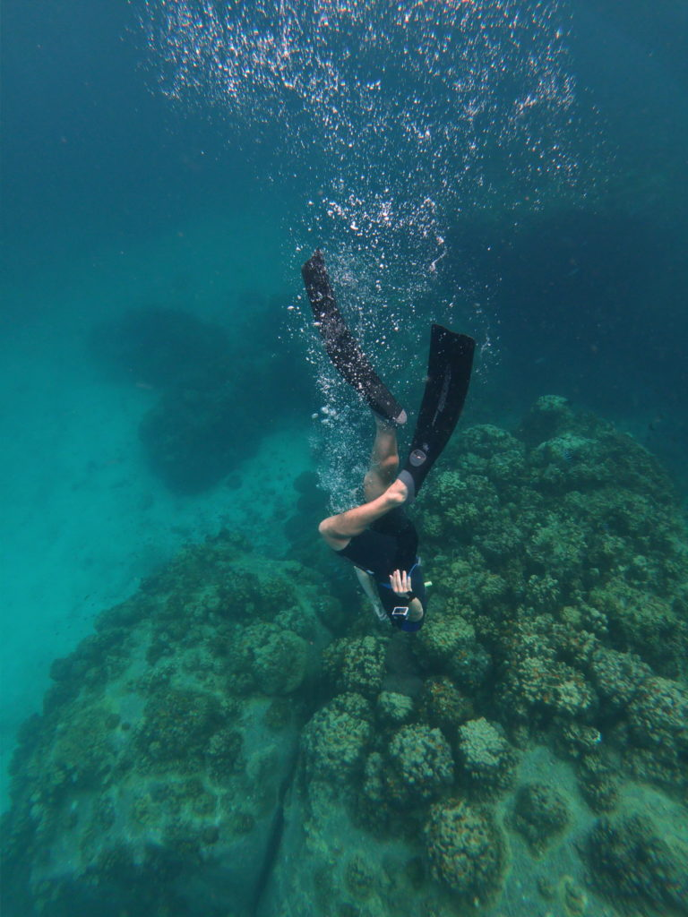 duck dive freediving