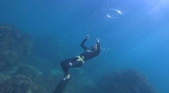 Frenzel fattah free diving
