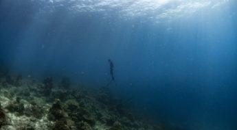 2 วิธีฝึก freediving กลั้นหายใจ ได้นานกว่าเดิมแต่สบายกว่าเดิม