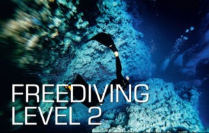 SSI-free-diving-level-2-Course