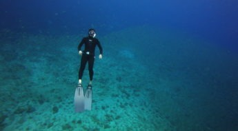 SSI freediver level2