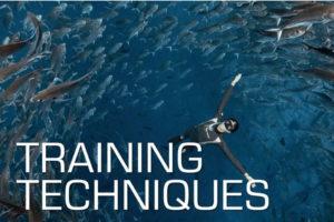 course เรียน freediving